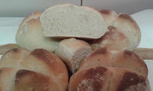 El pan ya listo para comer