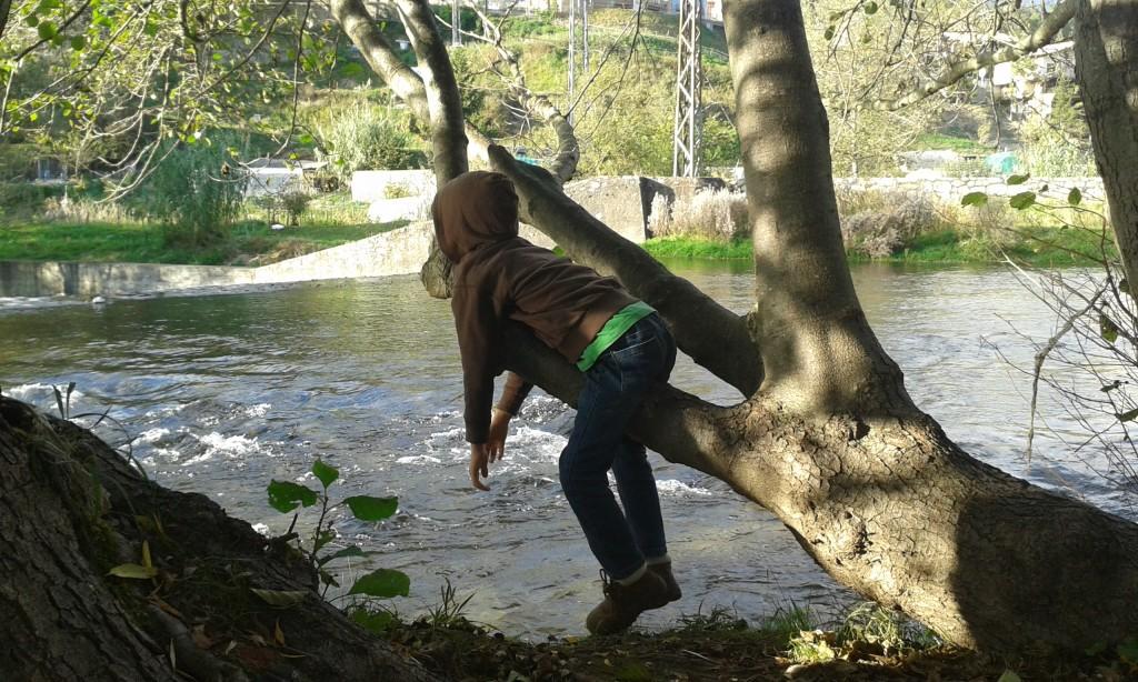 Un niño relajándose colgado de la rama de un árbol