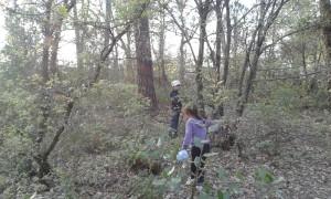 Los niños juegan a ser duendes del bosque
