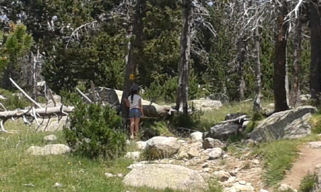 Siguiendo las señales de la montaña