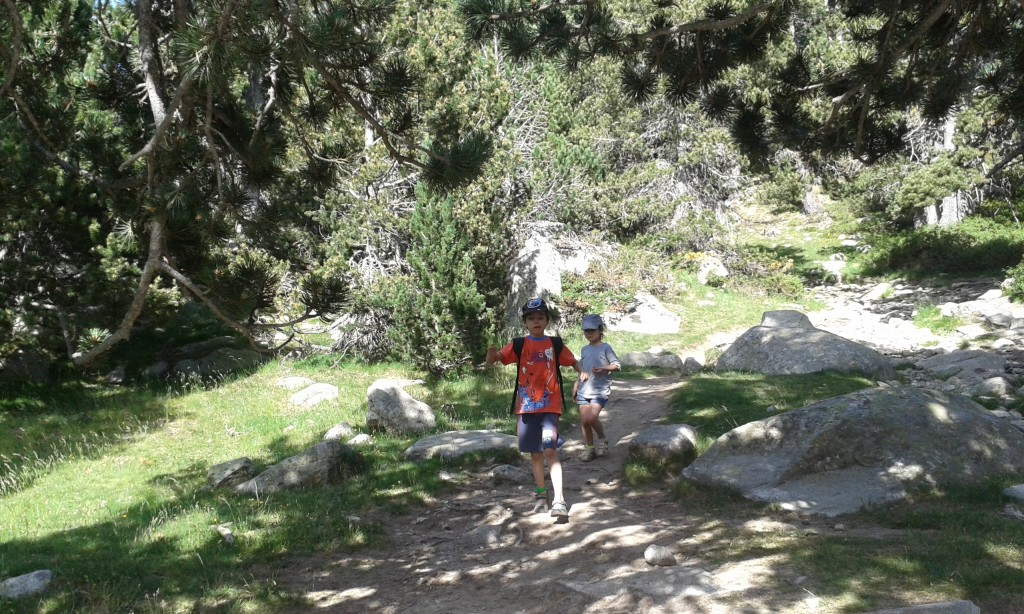 Niños siguiendo el camino de un parque natural