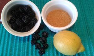 Ingredientes para preparar mermelada de moras silvestres