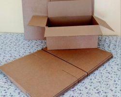 El origen del cartón: desde el papiro hasta Robert Gair